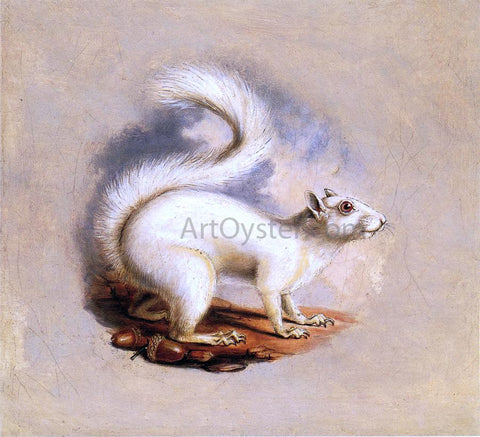 II Titian Ramsey Peale White Squirrel - Hand Painted Oil Painting