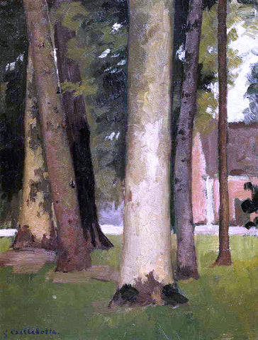 Gustave Caillebotte Yerres, Through the Grove, the Ornamental Farm - Hand Painted Oil Painting