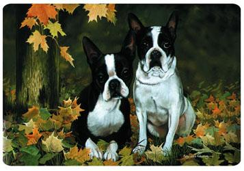 Boston Terriers Placemat