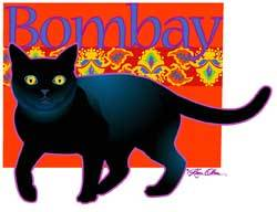 Bombay Cat (Tees, Sweatshirts)