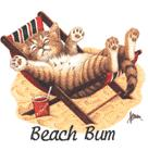 Cat Corner-Beach Bum (Kitten in Chair) (Tees, Sweatshirts)
