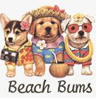 Beach Bum Puppies