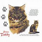 Brown Tabby Cat History Tote