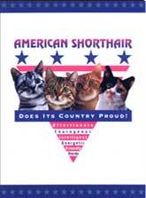 American Shorthair Cat Crest