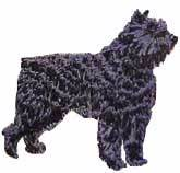 Bouvier Des Flandres(40539) Embroidered Hat