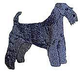 Kerry Blue Terrier(40213) Embroidered Hat