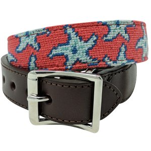 Starfish Nautical Needlepoint Dog Collar