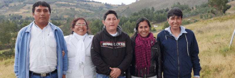 Teachers in Peru