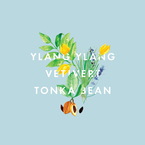 Ylang Ylang, Vetivert & Tonka Bean Essential Oil Blend 10ml