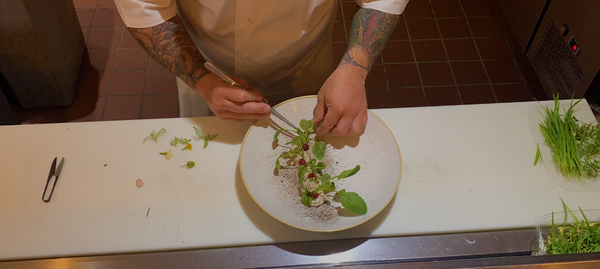 Chef Cesare de Chellis uses Three Forks Local Greens