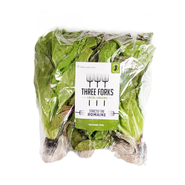 Living Romaine Heads (3 Count)