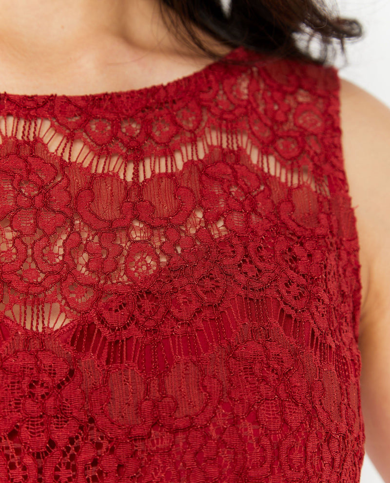 Fyona Lace Overlay Dress Dresses OSMOSE-STORES