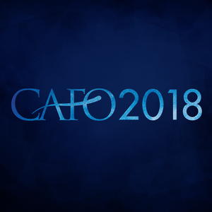 2018 - The Bridge: Insights from CAFO's Aging Out Initiative (U.S. Foster Care)