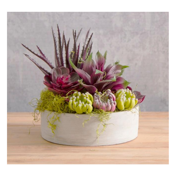 Artificial Succulent Agave Small Purple 20x25cm