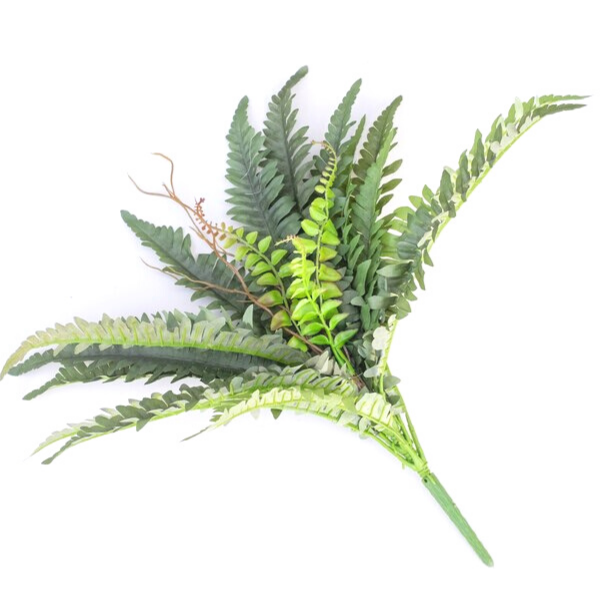 Boston Fern With Twig Green