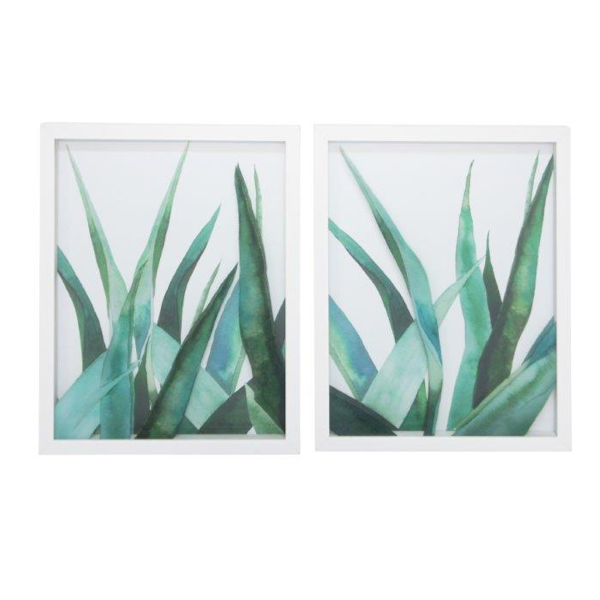 Agave Print A with Glass 45x35cm