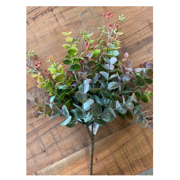 Eucalyptus Bush Green Burgundy 27cm