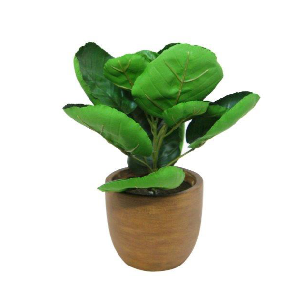 Bailey Plant In Cement Pot 26cm