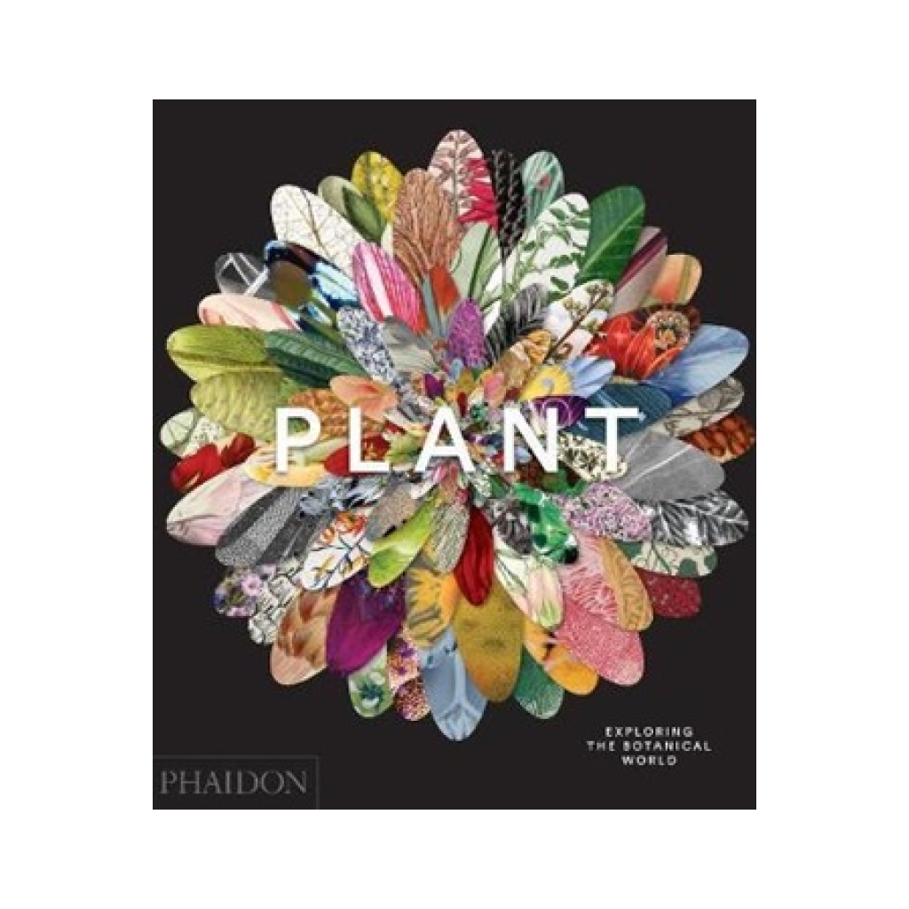 Plant Book Art Of The Botanical World