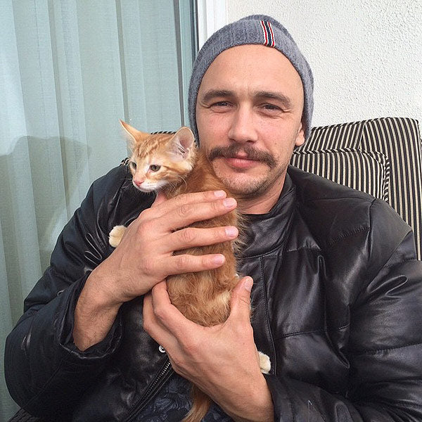 10 Photos Of Dads & Their Cats