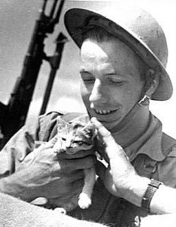 purrfect apparel soldier & cat
