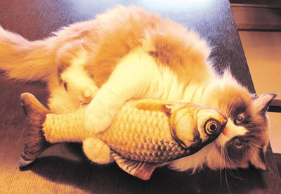 3D Fish Toys For Cats - Purrfect Apparel