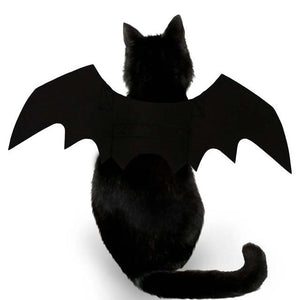 'Bat Cat' Bat Wings Halloween Costume - Purrfect Apparel