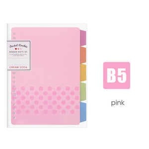 Organized Notebook - Japanese Style Study Binder - SALE
