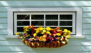 Looking for Hanging Basket Ideas? We've Got 'Em!