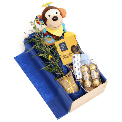 Unique Newborn Baby Gift - NZ Tree Gift, Soft Toy Monkey and Treats