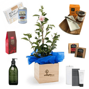 Create your own plant gift by adding the gift products of your choice