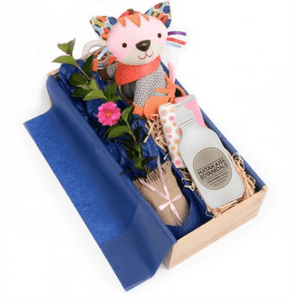 Baby Nourish Gift Box - Tree Gifts NZ