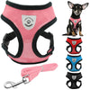 Air Nylon Mesh Harness Vest and Leash Set