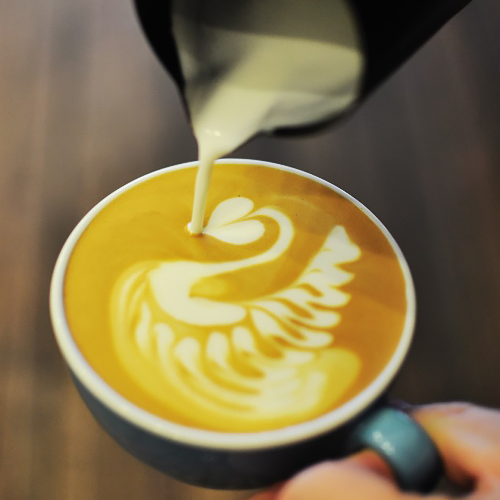 Someone pouring a latte art swan into cup.