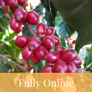SCA Introduction To Coffee Course | Live Video Session