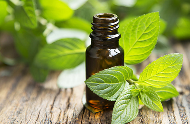 Who's it For: Peppermint Essential Oil