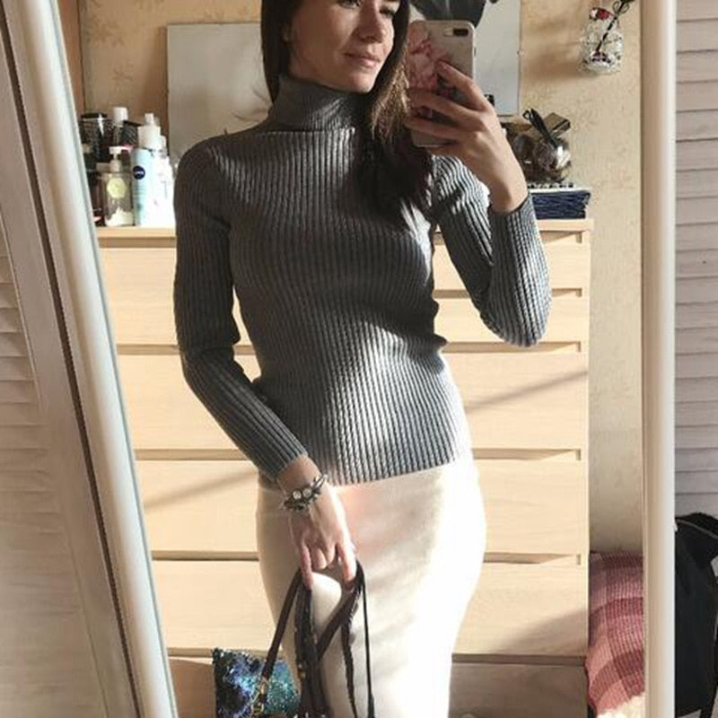 Thick Turtleneck Warm Women Sweater Autumn Winter Knitted Femme Pull High Elasticity Soft Female Pull-overs Sweater