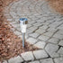Intellibrands Clear Glass Stainless Steel LED Solar Light