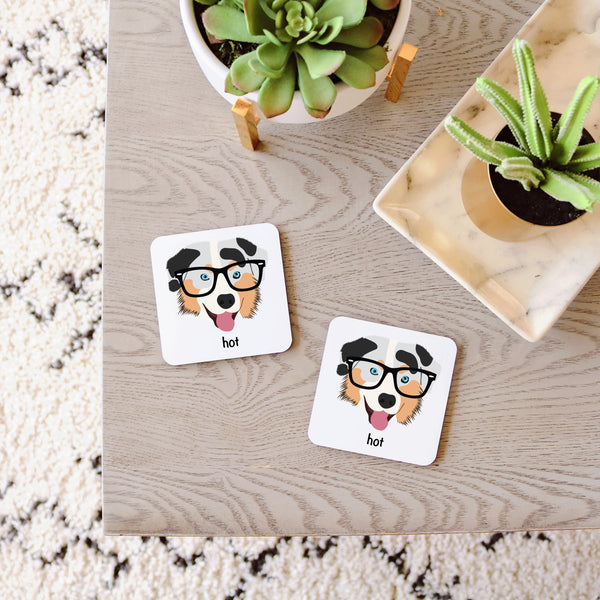 Australian Shepherd with Glasses Coasters