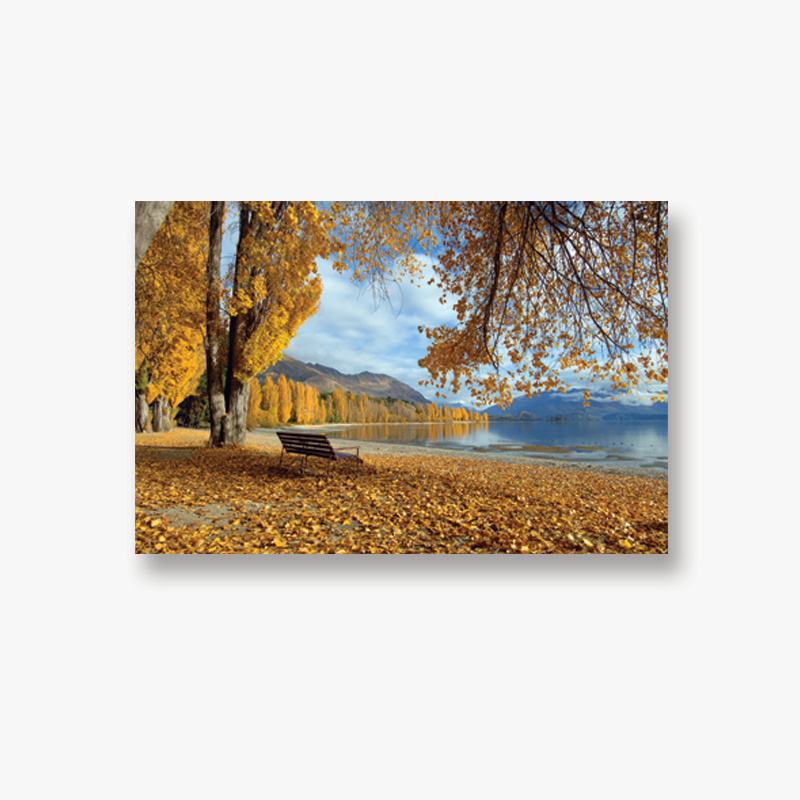 ODT Canvas Collection - Autumn in Wanaka