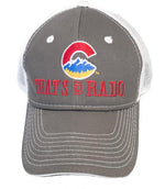 Logo Hat Gray
