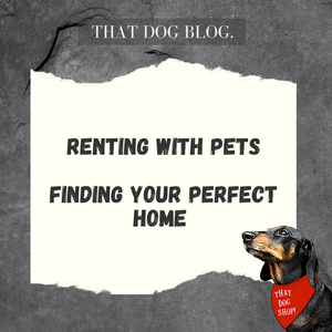 Renting with Pets - Finding & keeping your perfect home!