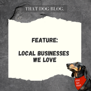Local Businesses We Love! - Little Guys & Cutie Pies