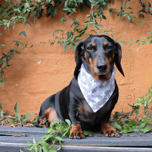 Dog Bandana - Cross Print by That Dog Shop - We have Afterpay!