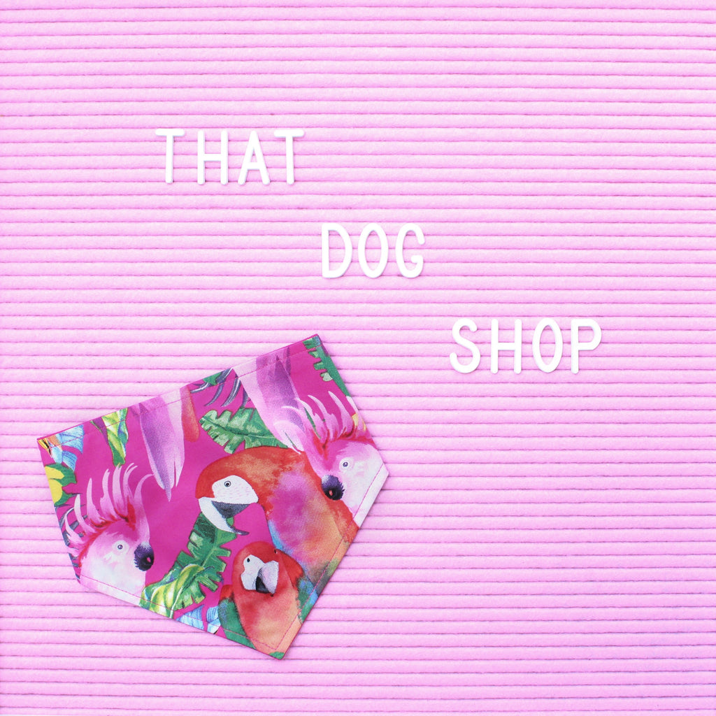 Dog Bandana - Parrots in Paradise by That Dog Shop - We have Afterpay!