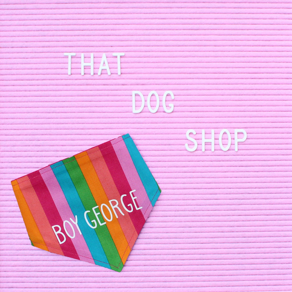 Dog Bandana - Rainbow Stripe by That Dog Shop - We have Afterpay!