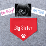 Pregnancy Announcement Dog Bandana Big Brother/Big Sister - Red