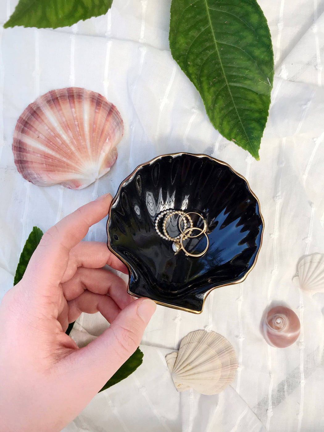 Black Shell Ceramic Dish