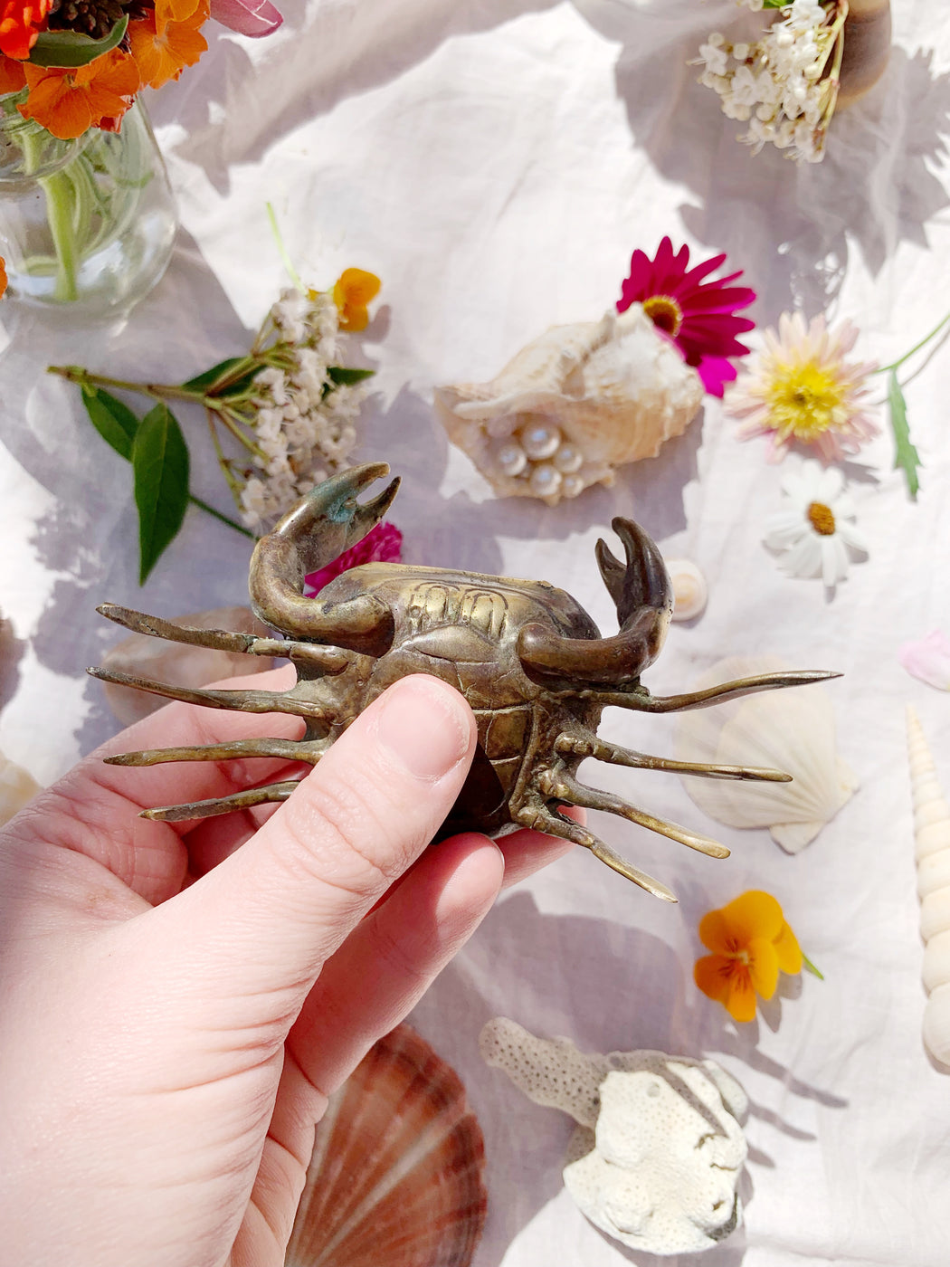 Brass Crab - Storytellers Workshop