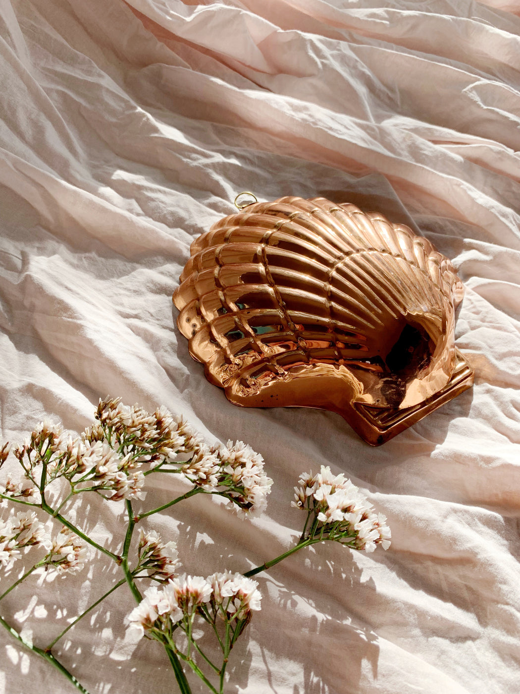 Copper Shell - Storytellers Workshop